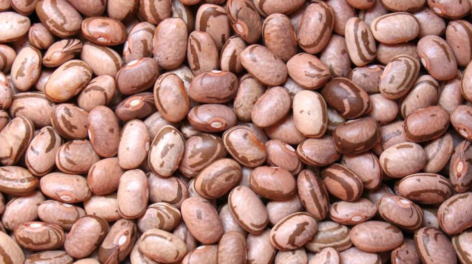 O que acontece com o grão de feijão se você não armazená-lo em ambiente climatizado?