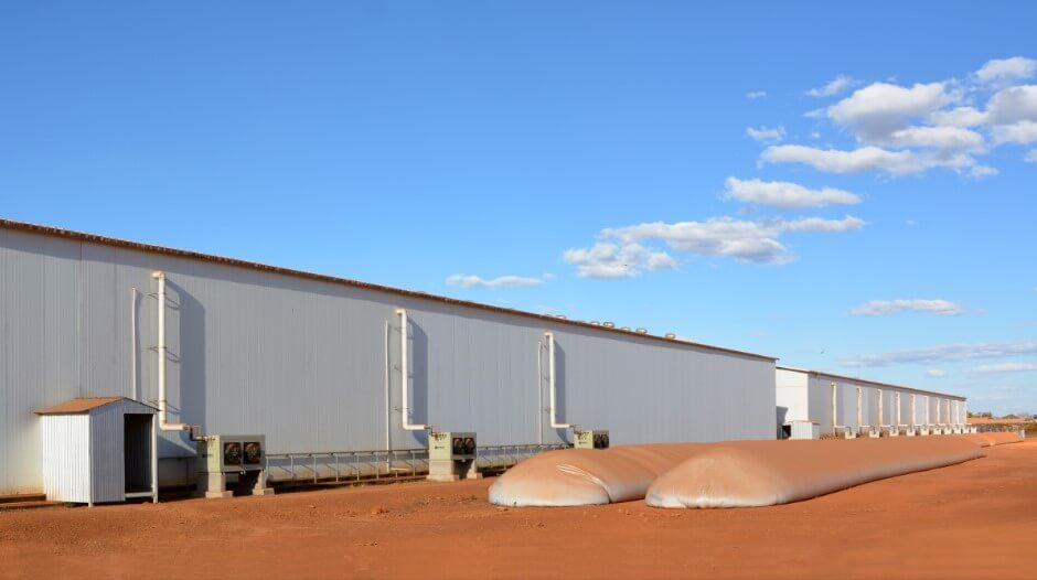 Tecnologia na armazenagem climatizada de sementes!